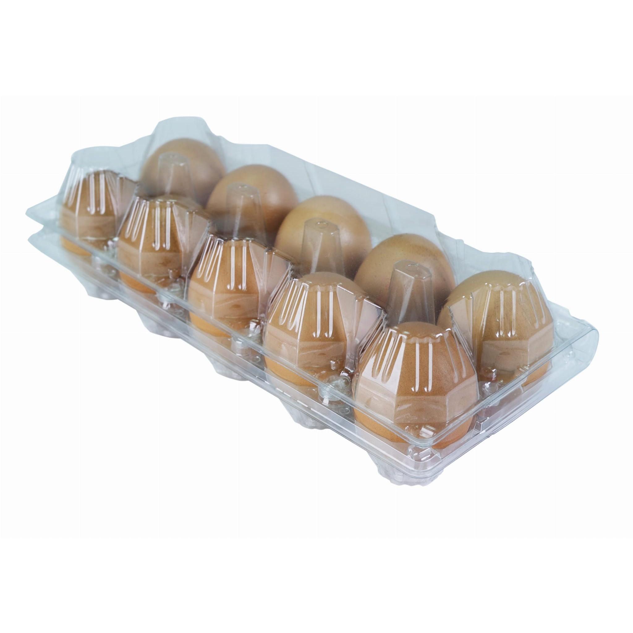 plastový obal na 10ks vajcia 600ks priehľadný 110x245x75mm megamix.sk
