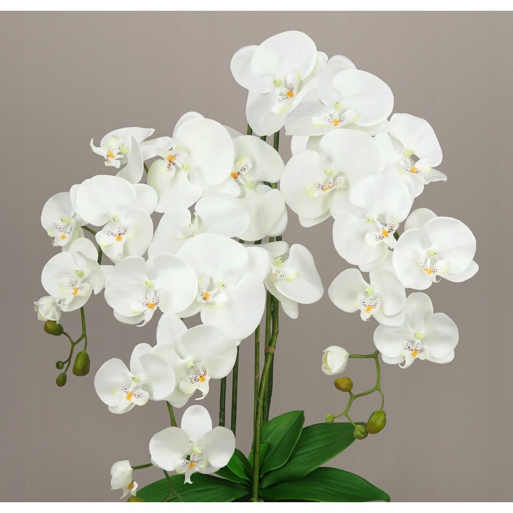 umelá orchidea kvet orchideje 70cm megamix.sk