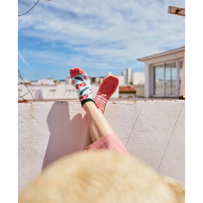 veselé ponožky FRUTTI di MARE plody mora 35-38 nízke farebné megamix.sk