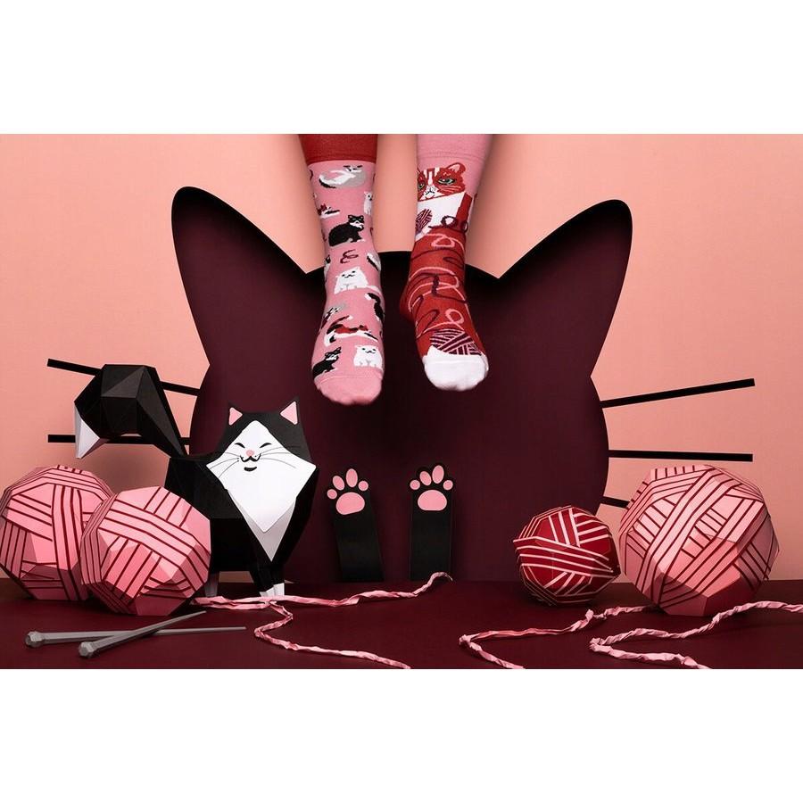 veselé ponožky PLAYFUL CAT mačky klbko vlny 39-42 farebné megamix.sk