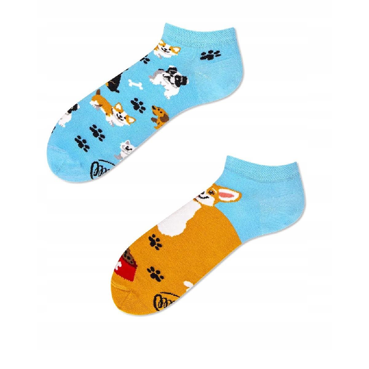 veselé ponožky PLAYFUL DOG LOW psy stopy 39-42 nízke farebné megamix.sk